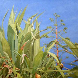 Wild Aloe Vera of Mare Monte Oil on Canvas 94 x 60 cm 2020-6ec7b8bf